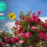 便利で安心なファイル転送サービス tenpu